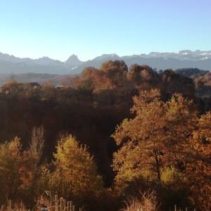 The Cru Lamouroux's landscape – Jurançon