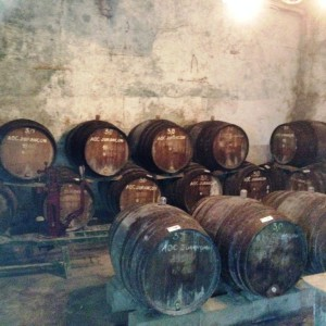 Barrel warehouse for the Cuvées – Cru Lamouroux – Jurançon