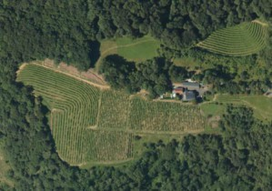 Aerial view of the Cru Lamouroux – Jurançon