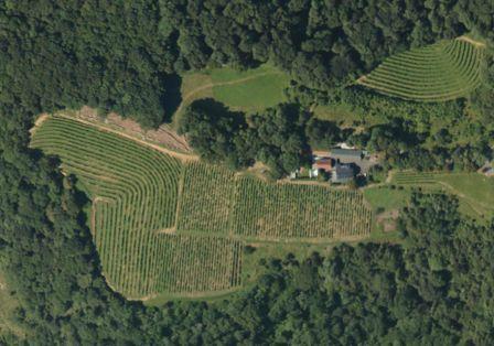 Aerial view of the Cru Lamouroux – Jurançon