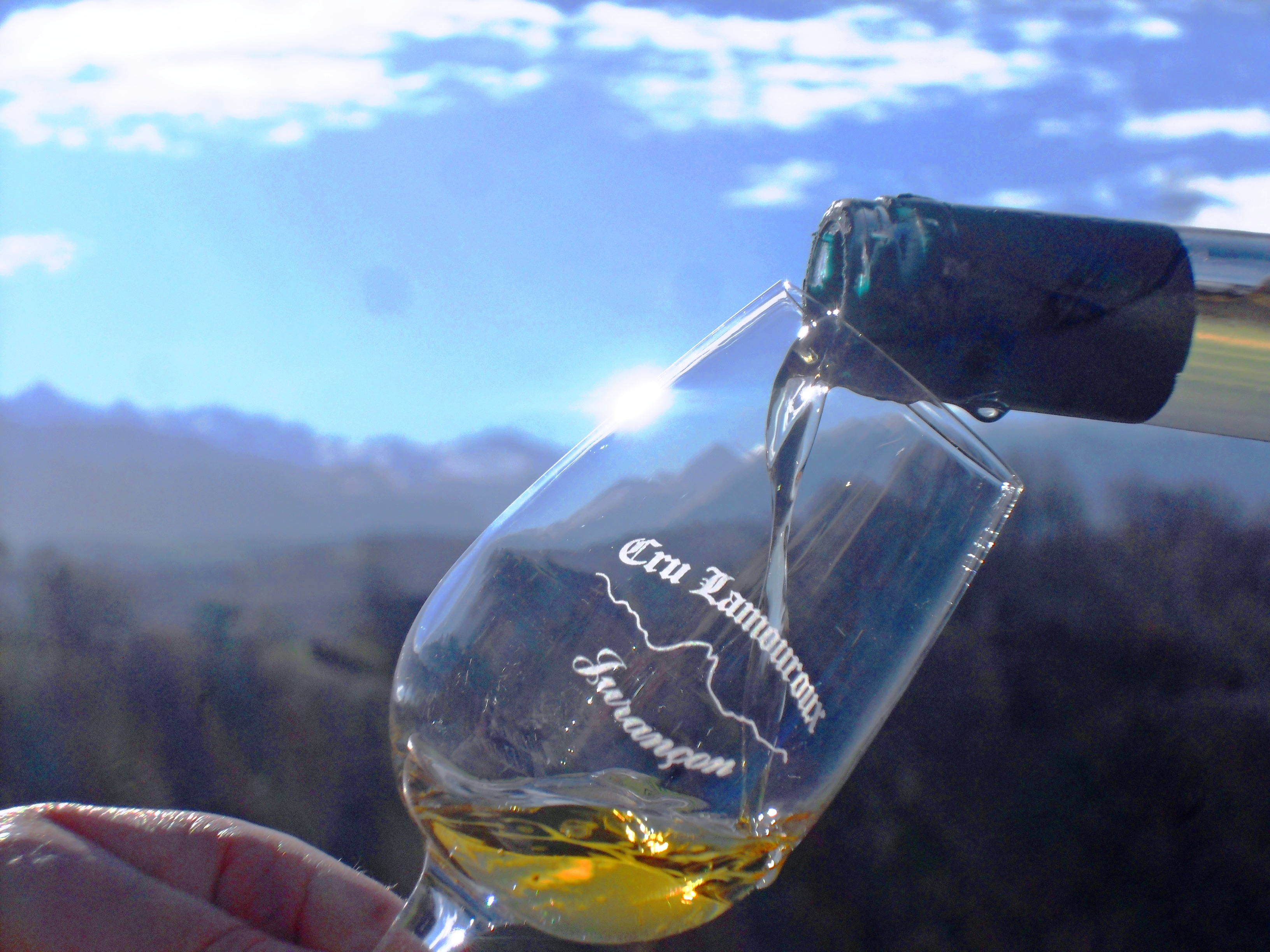 A glass of Cru Lamouroux full of sunlight – Jurançon
