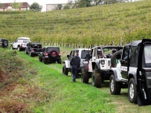 jeep dans vignes 6
